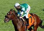 October 10, 2021: Averly Jane #7, ridden by jockey Tyler Gaffalione wins the listed Indian Summer Stakes on the turf at Keeneland Racecourse in Lexington, K.Y. on October 10th, 2021. Candice Chavez/Eclipse Sportswire/CSM