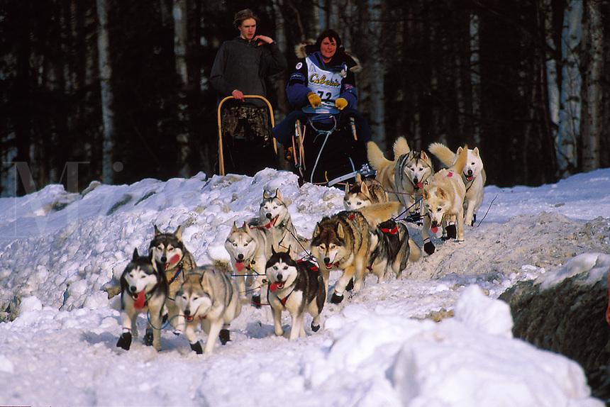 An Iditarod sled team. Alaska.