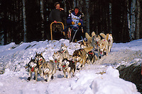 An Iditarod sled team. Alaska.