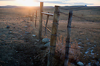 A fence stands at dusk in farmland in the Sweetgrass Hills north of Galata, Montana, USA.