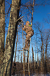 Crossbow hunter climbing up a ladder stand