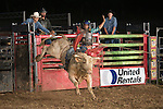 SEBRA - Jane Lew, WV - 7.17.2015 - Bulls & Action