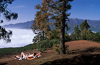 Vulkanlandschaft bei Refugio El Pilar, La Palma, Kanarische Inseln, Spanien