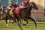 DEL MAR, CA  AUGUST 17: #1 Cambier Parc, ridden by John Velazquez, in the stretch  of the Del Mar Oaks (Grade 1) on August 17, 2019 at Del Mar Thoroughbred Club in Del Mar, CA.  . (Photo by Casey Phillips/Eclipse Sportswire/CS\PDO1M)\PDO1