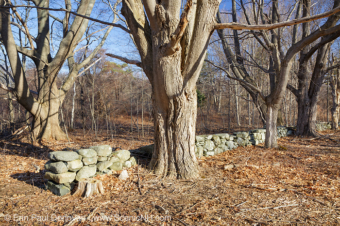 Stone wall on the grounds of Odiorne Point State Park in Rye, New Hampshire. This is the site of Fort Dearborn, an old military fort.