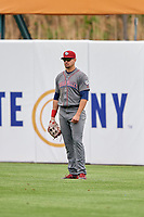 Lehigh Valley IronPigs right fielder Dylan Cozens (31) during a game against the Syracuse Chiefs on May 20, 2018 at NBT Bank Stadium in Syracuse, New York.  Lehigh Valley defeated Syracuse 5-2.  (Mike Janes/Four Seam Images)