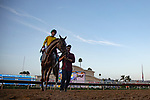 DEL MAR,CA-SEPTEMBER 01: Vasilika,ridden by Flavien Prat, after winning the John C. Mabee Stakes at Del Mar Race Track on September 1,2018 in Del Mar,California (Photo by Kaz Ishida/Eclipse Sportswire/Getty Images)