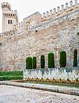 King's Garden, at La Seu Cathedral, Palma de Mallorca, Spain