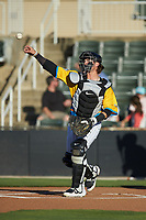 Rapidos de Kannapolis catcher Michael Hickman (37) on defense against the Greensboro Grasshoppers at Kannapolis Intimidators Stadium on June 14, 2019 in Kannapolis, North Carolina. The Grasshoppers defeated the Rapidos de Kannapolis 4-1. (Brian Westerholt/Four Seam Images)