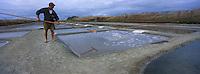 Europe/France/Poitou-Charentes/17/Charente-Maritime/Ile de Ré/Loix-en-Ré: Récolte du sel dans les marais salant au Fier-d'Ars