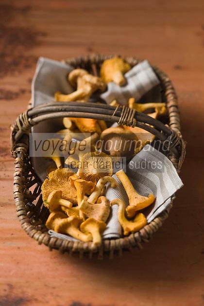 Cuisine/Gastronomie générale: Girolles ou chanterelles - Stylisme : Valérie LHOMME