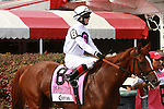 Mykinfofladyfriend.  Zagora with Ramon Dominguez win the Grade II Balston Spa for fillies and mares,  3-year & up going 1 1/16 mile on the turf Trainer: Chad Brown. Owner Martin S. Schwartz