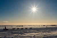 Aaron Burmeister runs past fish camps on the outskirts of the city as he heads toward the finish at Nome on Wednesday March 14th during the 2018 Iditarod Sled Dog Race.  <br /> <br /> Photo by Jeff Schultz/SchultzPhoto.com  (C) 2018  ALL RIGHTS RESERVED