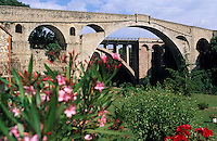 Europe/France/Languedoc-Roussillon/66/Pyrénées-Orientales/Céret: Le pont du Diable