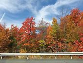 Visions of Catskill