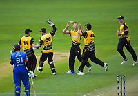 Wellington's Jimmy Neesham celebrates a wicket during the Dream11 Super Smash cricket final between the Wellington Firebirds and Auckland Aces at Basin Reserve in Wellington, New Zealand on Sunday, 19 January 2020. Photo: Dave Lintott / lintottphoto.co.nz