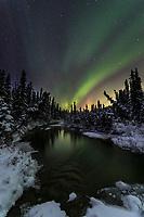 The aurora displays above a flowing stream in the Alaska Range, Interior, Alaska.