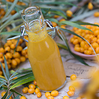 Sanddorn-Saft, Sanddornsaft, Saft aus Sanddornbeeren, Beeren, Früchte, Sanddorn, Sand-Dorn, Küsten-Sanddorn, Hippophae rhamnoides, common sea-buckthorn, Sea Buckthorn, Buckthorn, sallow thorn, seaberry, fruit, buckthorn berry juice, juice, Argousier, Saule épineux