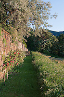 The retaining wall below the gardens is planted with pink rambling roses