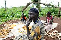 ETHIOPIA, Gambela, village Gog-Dipach, Anuak family harvest maize  / AETHIOPIEN, Gambela, Dorf GOG DIPACH der Ethnie ANUAK, Maisernte bei einem Farmer und seiner Familie, seine Felder liegen eine Stunde Fussmarsch vom Dorf entfernt, die einzelnen Gehoefte wurde durch das staatliche villagization Programm zusammengelegt um Land an Investoren zu verpachten