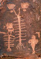 Indian rock art, Petroglyphs. Moab Utah USA Kane Creek.