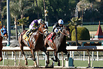 ARCADIA, CA JANUARY 30: #4 Express Train, ridden by Juan Hernandez,and #1 Tizamagician, ridden by Drayden Van Dyke, duel in the stretch of he San Pasqual Stakes (Grade ll) on January 30, 2021 at Santa Anita Park in Arcadia, CA  (Photo by Casey Phillips/EclipseSportswire/CSM)