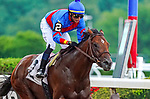 July 10, 2021: Water's Edge #2, ridden by jockey Jose L. Ortiz wins a maiden special weight on the dirt at Belmont Park in Elmont, New York on July 10, 2021. Dan Heary/Eclipse Sportswire/CSM