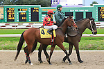 January 16, 2016: String King with Richard E. Eramia up in the Col. E.R. Bradley Handicap race at the Fairgrounds race course in New Orleans Louisiana. Steve Dalmado/ESW/CSM