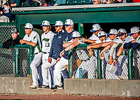 29 May 2021: Members of the Vermont Lake Monsters watch play from the dugout during a game against the Norwich Sea Unicorns at Centennial Field in Burlington, Vermont. The Lake Monsters defeated the Unicorns 6-3 in their FCBL Home Opener, the first home game played at Centennial Field post-Covid-19 pandemic. Mandatory Credit: Ed Wolfstein Photo *** RAW (NEF) Image File Available ***