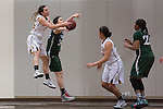 2015 girls basketball: St. Francis High Schoo;l