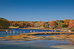 Fall foliage at Cape Neddick, York, ME