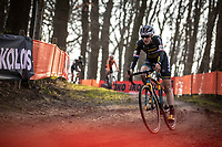 later race winner Lucinda Brand (NED/Telenet Baloise Lions)<br /> <br /> Elite Womens Race <br /> UCI Cyclocross Worldcup – Hoogerheide (Netherlands)<br /> ©kramon