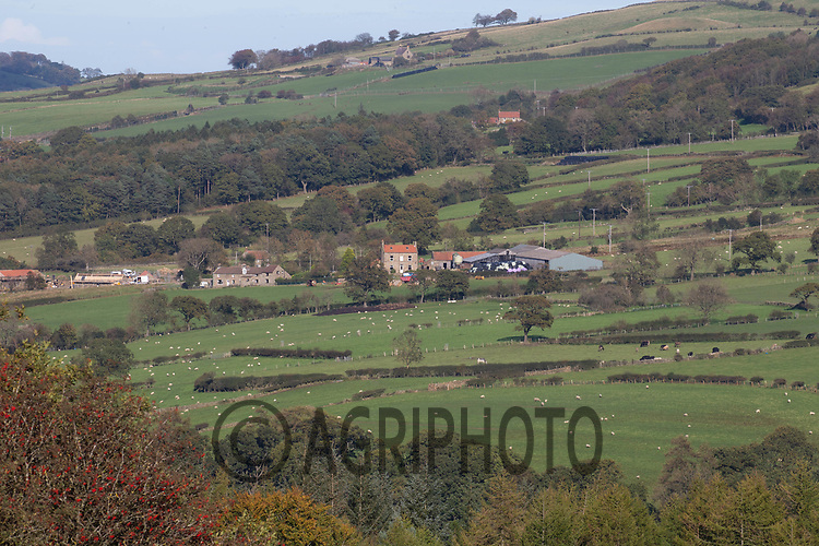 6.10.2020 Farming landscape on the North Yorkshire Moors<br /> ©Tim Scrivener Photographer 07850 303986<br />      ....Covering Agriculture In The