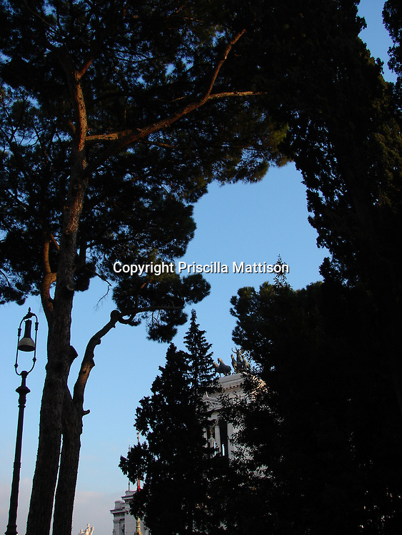 Rome, Italy - January 31, 2007:  Trees lit by the setting sun nearly hide the Victor Emmanuel Monument.