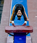 February 19, 2021: Towson University's Camille Vitoff competes in the vault during the 2nd Annual George McGinty Alumni Meet at the SECU Arena at Towson University in Towson, Maryland. Scott Serio/Eclipse Sportswire/CSM