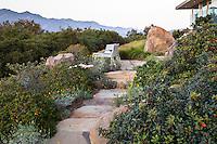 Stone path through California native plant garden, Santa Barbara,