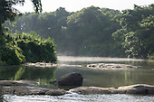 Xingu River, Para State, Brazil. The Volta Grande. Early morning mist.