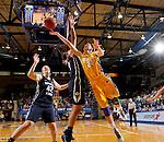 Brigham Young University at South Dakota State University Women's Basketball
