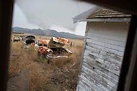 Old, abandoned cars stand near a farmhouse near Square Butte, Montana, USA.
