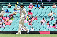 9th January 2021; Sydney Cricket Ground, Sydney, New South Wales, Australia; International Test Cricket, Third Test Day Three, Australia versus India; Tim Paine of Australia appeals for the catch and challenges the decision