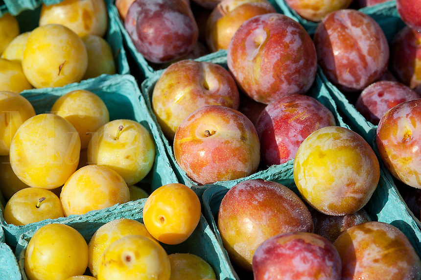 Plums for sale at a farmers market.