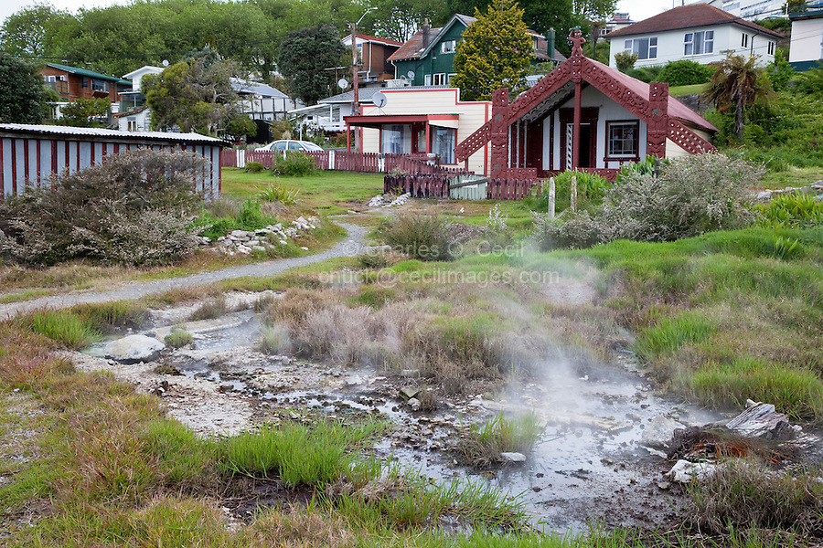 Former Meeting House, now a Private Residence.  Thermal Steam Rising from the Ground.  Ohinemutu Village, Rotorua.