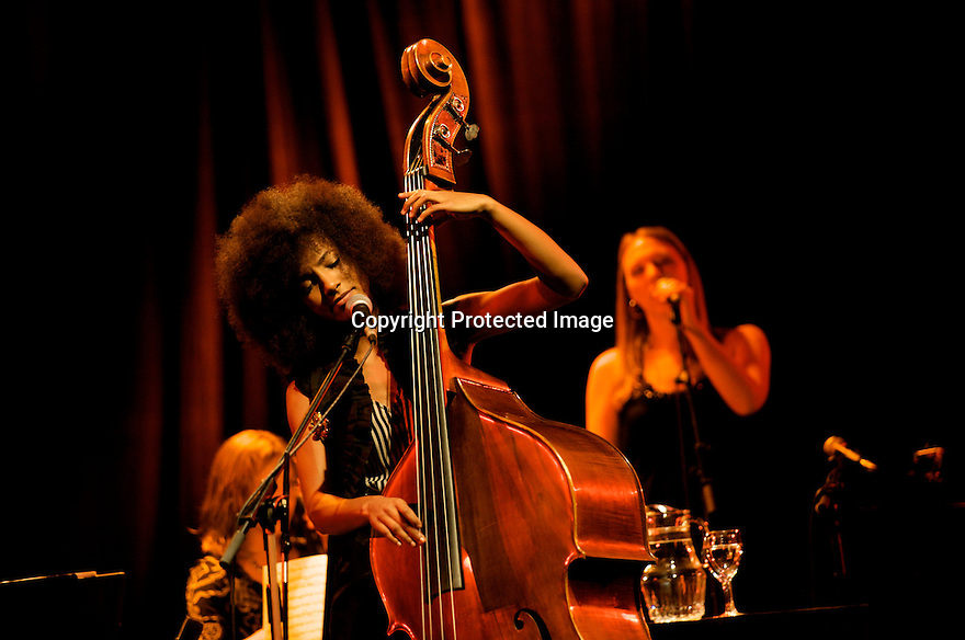 MADRID, SPAIN - NOVEMBER 17: Esperanza Spalding performs in the 'XXVII Festival Jazz Madrid 2010' at Teatro Fernan Gomez on November 17, 2010 in Madrid, Spain. (Photo by Juan Naharro Gimenez)