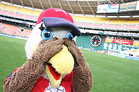 Glory, mascot of the Washington Freedom during a WPS match against ST. Louis Athletica on May 1 2010, at RFK Stadium, in Washington D.C. Freedom won 3-1.
