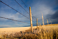 A fence stands above farm fields outside Conrad, Montana, USA.
