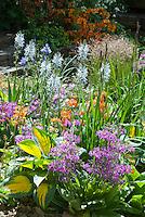 Flowering Garden in Spring