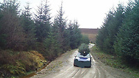 """Pictured: A blue car is seen with a cut tree on its roof leaving Clocaenog forest in north Wales, UK. <br /> Re: A car was spotted on camera with a Christmas tree on their car roof leaving Clocaenog forest in north Wales, UK.<br /> North Wales Police said one of several trail cameras photographed the car leaving.<br /> The 15,000 acre (6,000 hectare) forest is located near Ruthin by the counties of Conwy and Denbighshire and is home to a red squirrel population.<br /> The force said in a social media post that it would be """"calling"""" on the driver soon."""