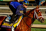 October 29, 2019 : Breeders' Cup Classic entrant Vino Rosso, trained by Todd A. Pletcher, exercises in preparation for the Breeders' Cup World Championships at Santa Anita Park in Arcadia, California on October 29, 2019. John Voorhees/Eclipse Sportswire/Breeders' Cup/CSM