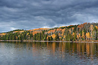 """""""Basswood Lake Shoreline""""<br /> <br /> It was a perfect fall day to canoe down the open expanses of Basswood Lake in the BWCA."""