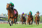 Proctor's Ledge (no. 8), ridden by Javier Castellano and trained by Brendan Walsh, wins the 23nd running of the grade 3 Lake George Stakes for three year old fillies on July 21, 2017 at Saratoga Race Course in Saratoga Springs, New York. (Bob Mayberger/Eclipse Sportswire)